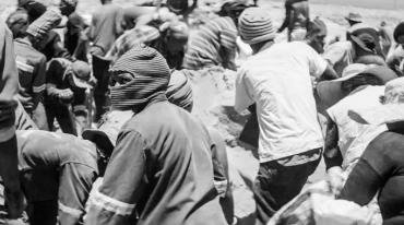 The photo shows a large group of people, many of them wearing hats or balaclavas. Most of them are bent over as they dig holes.