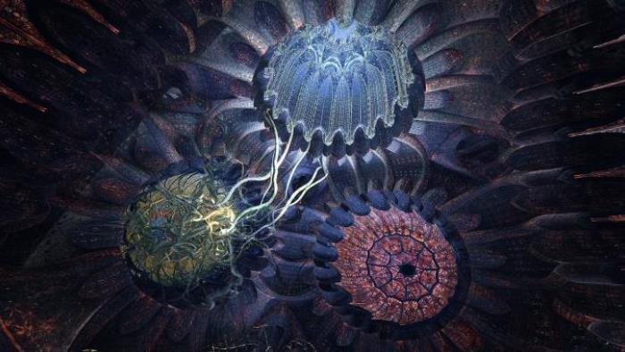 Ayahuasca - Kosmik Journey